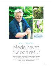 Allt om Trädgård / Fixa sommar 2013