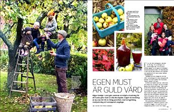 Allt om Trädgård Nr 13, 2013