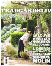Trädgårdsliv Nr 1, 2013 - Cecilias narcisser