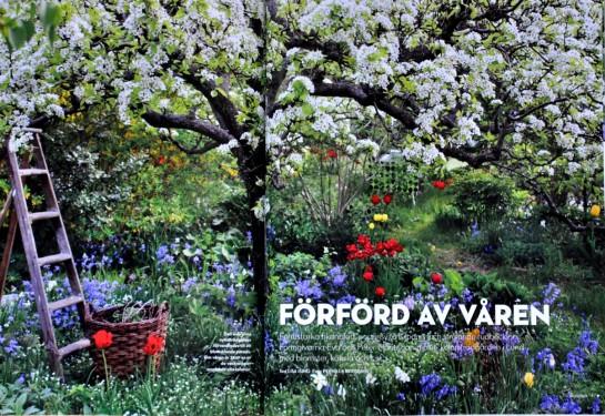 Sköna Hem-Förförd av våren!