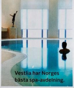 Norge, detaljbilder-s spa