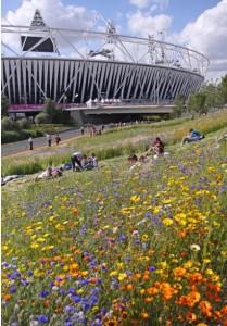 Olympic park V Foto J. Horak-Druiff
