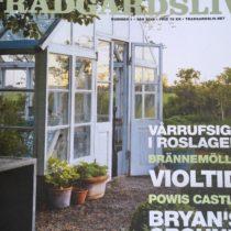 Bästa vårtecknet - årets första nummer av Trädgårdsliv!